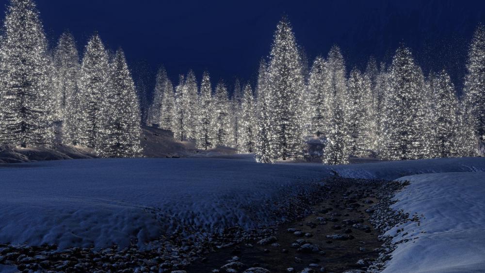 Christmas lights ✨ wallpaper