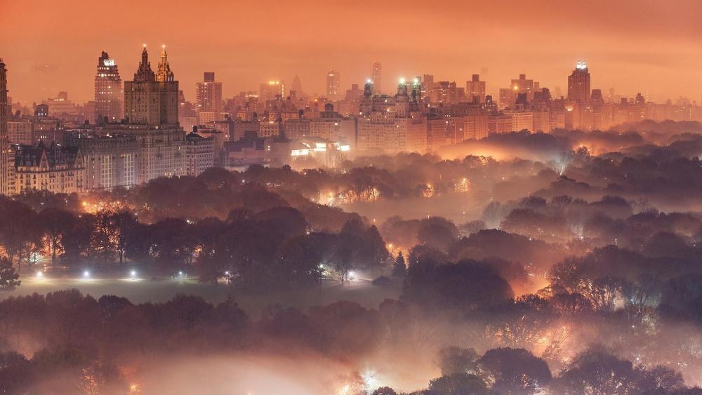 Central Park at dusk wallpaper