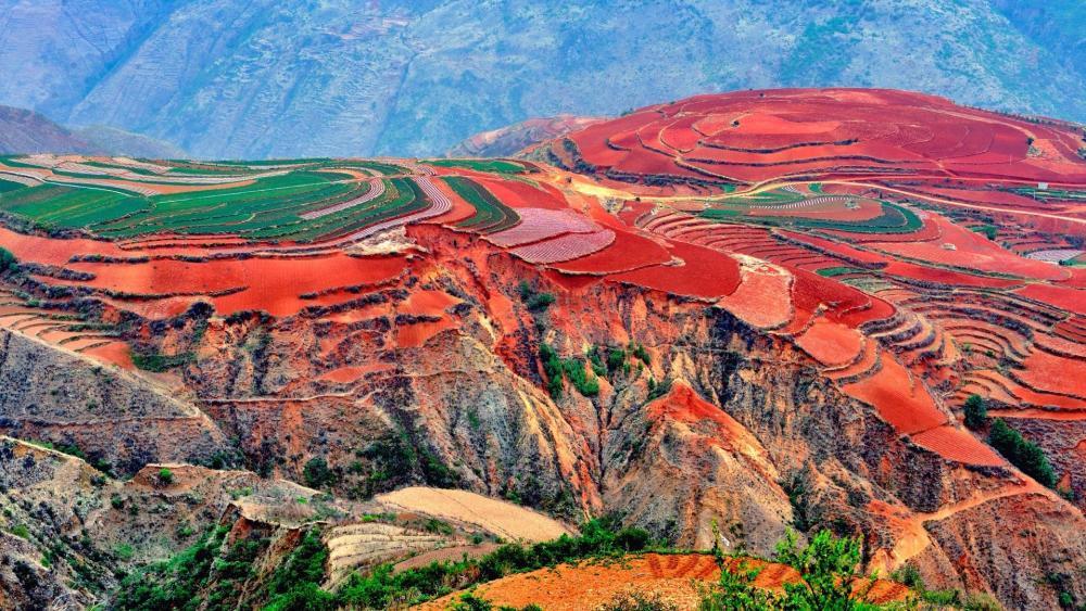 Dongchuan Red Land (Kunming, China) wallpaper