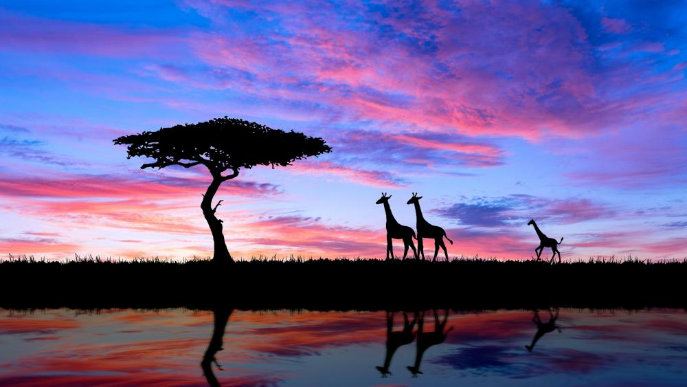 African savanna wallpaper