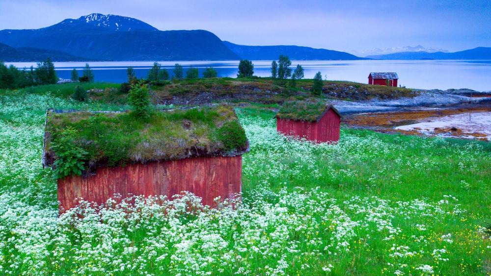 Small lakeside houses Norway wallpaper