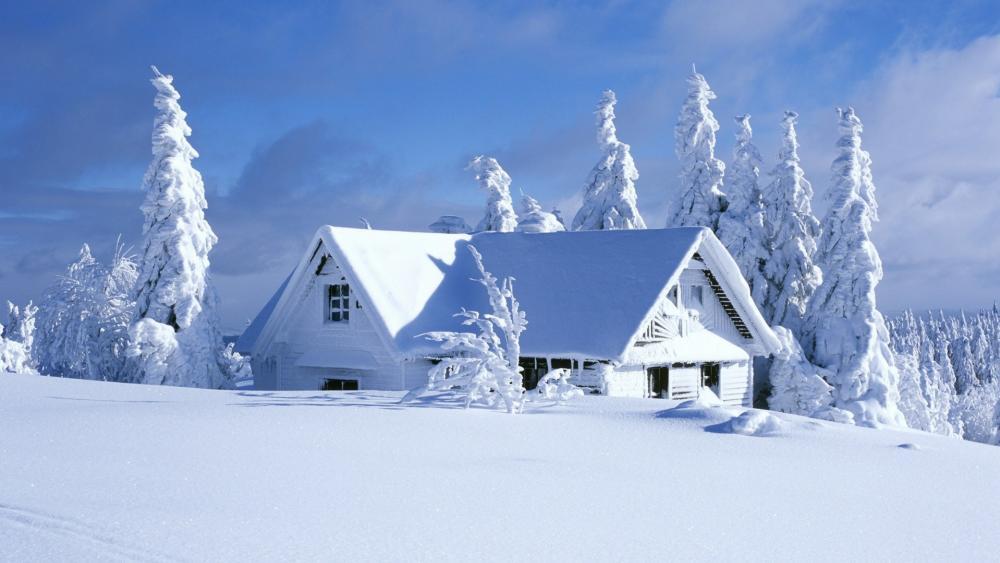 Snowy winter weather wallpaper