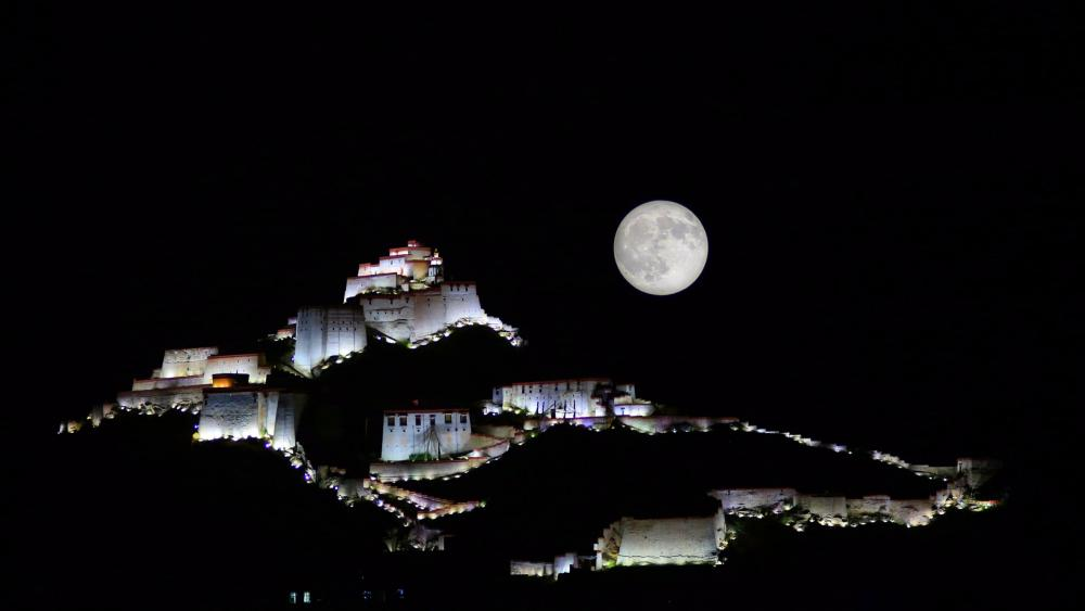 Potala moonlight wallpaper