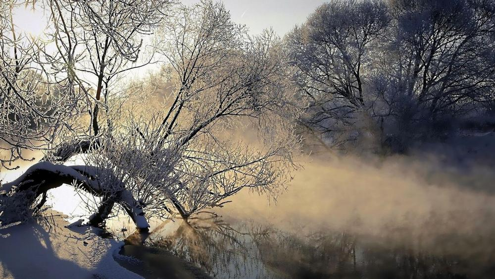 Hoarfrost along the river wallpaper