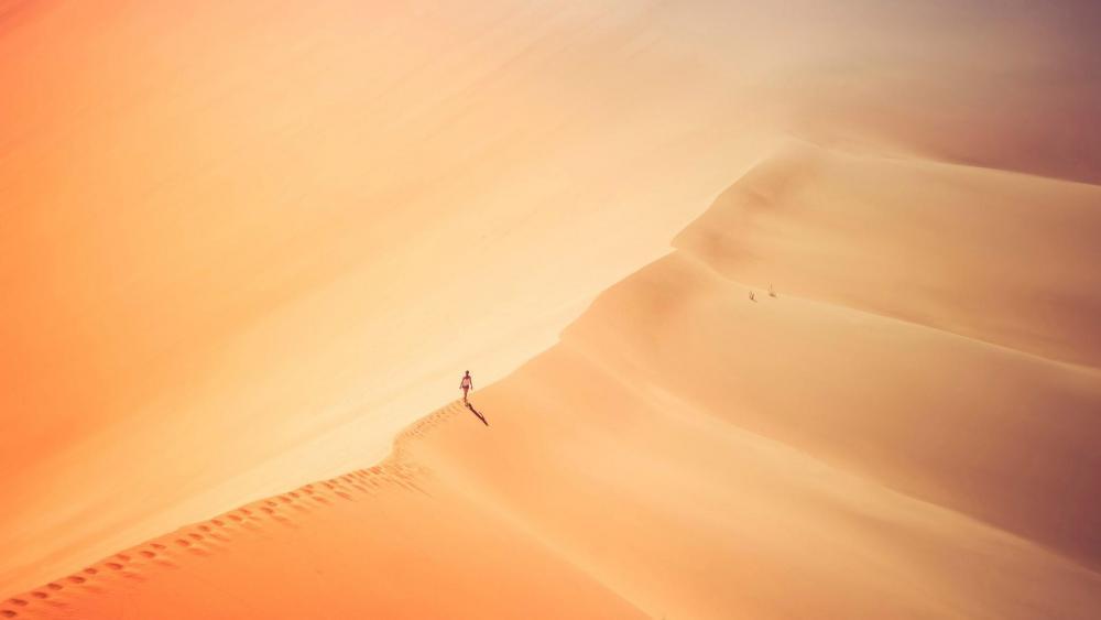 Alone in desert wallpaper