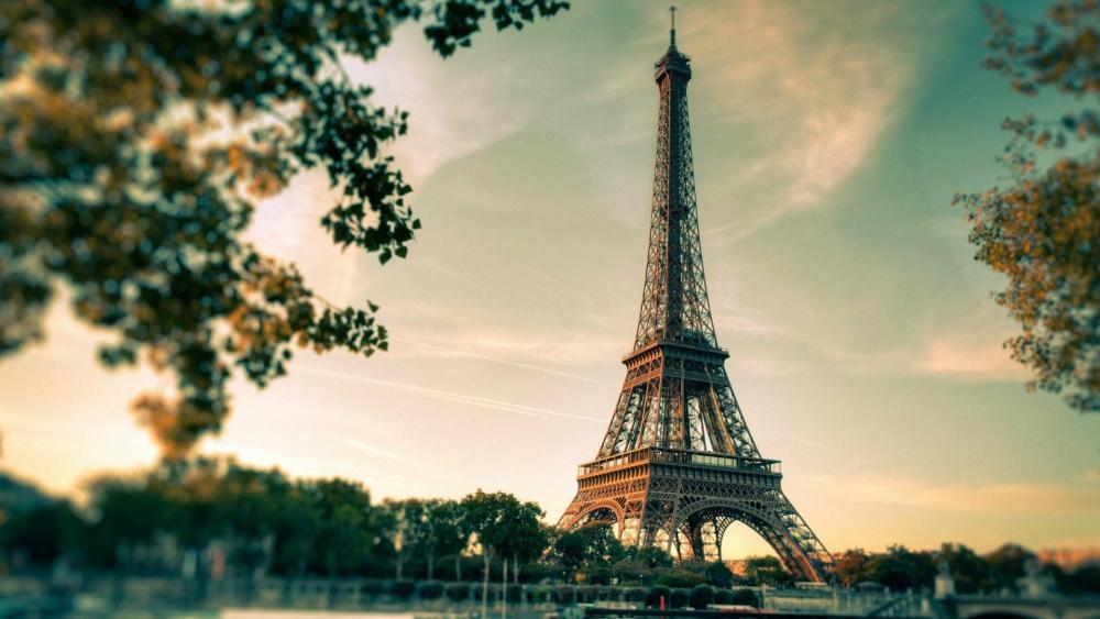 Eiffel Tower from Champ de Mars Park wallpaper