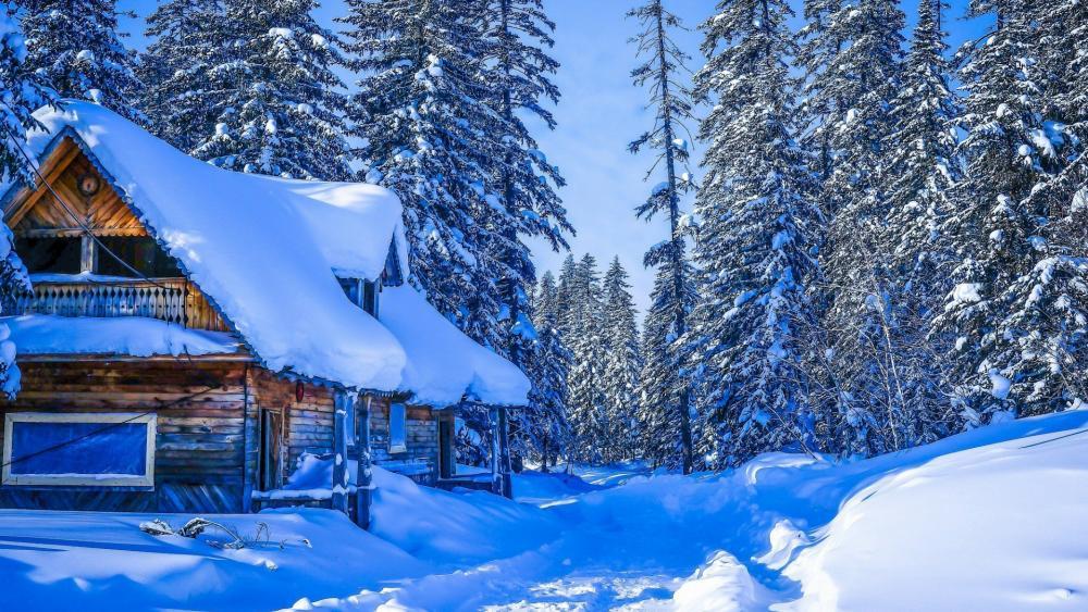 Snowy log cabin in Russia wallpaper