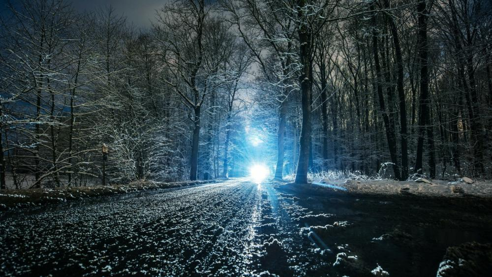 Snowy nighttime wallpaper