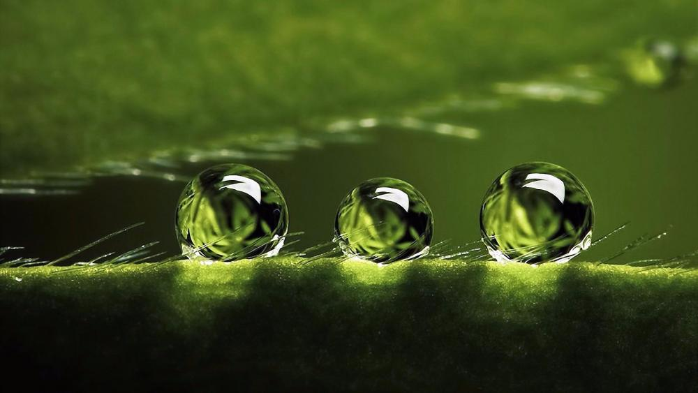 Three drops of water wallpaper