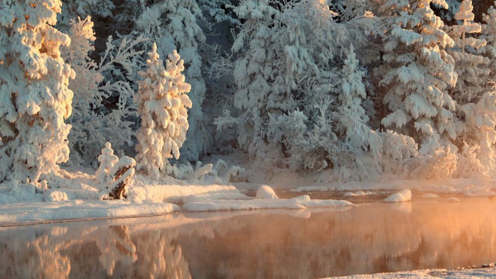 Bled in winter (Slovenia) wallpaper
