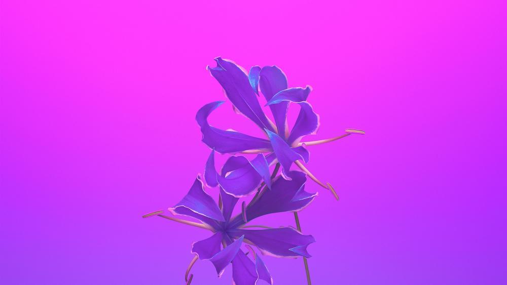 Purple flower illustration art wallpaper