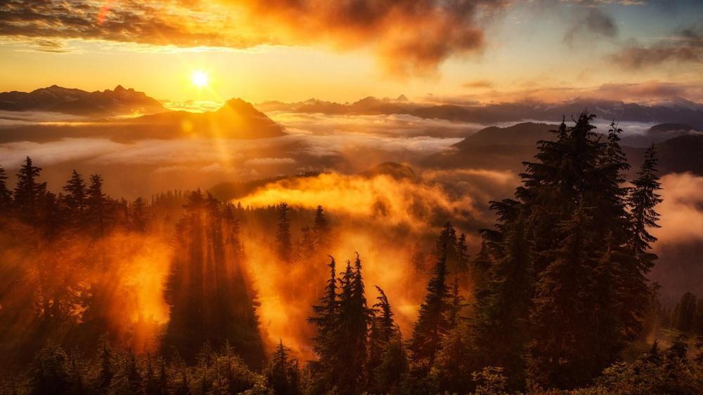 Evergreen Mountain Lookout - Washington wallpaper