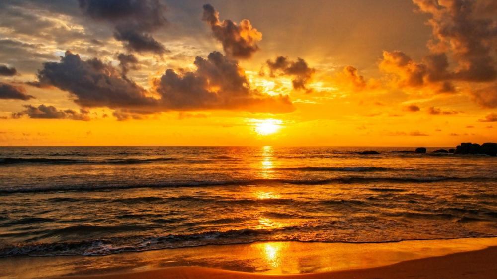 Golden sunset over the Indian Ocean in Sri Lanka wallpaper