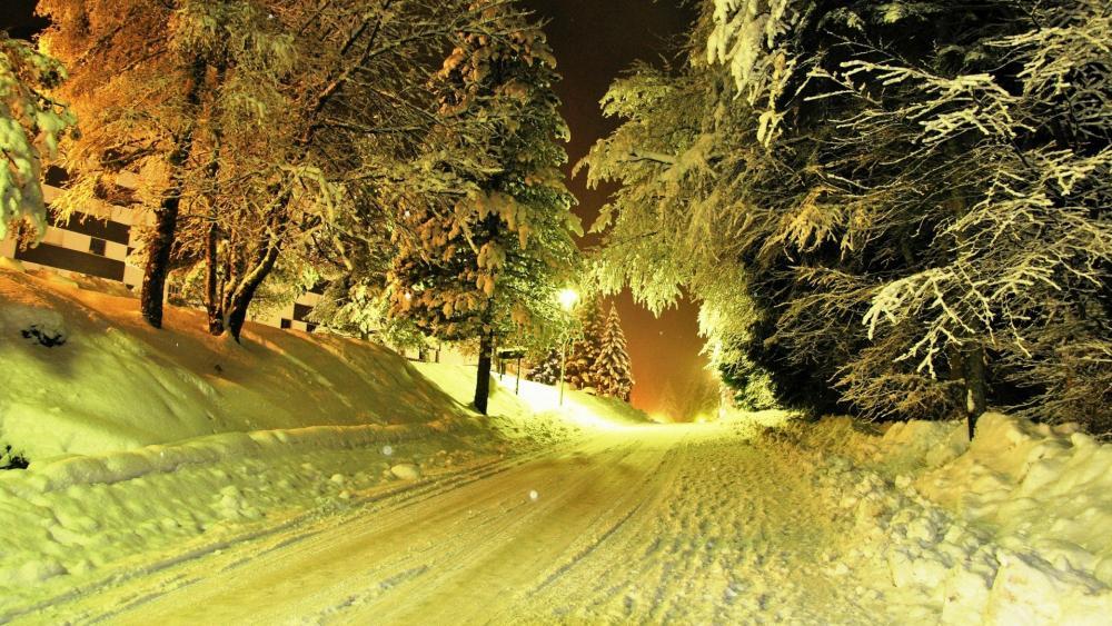Winter night road wallpaper