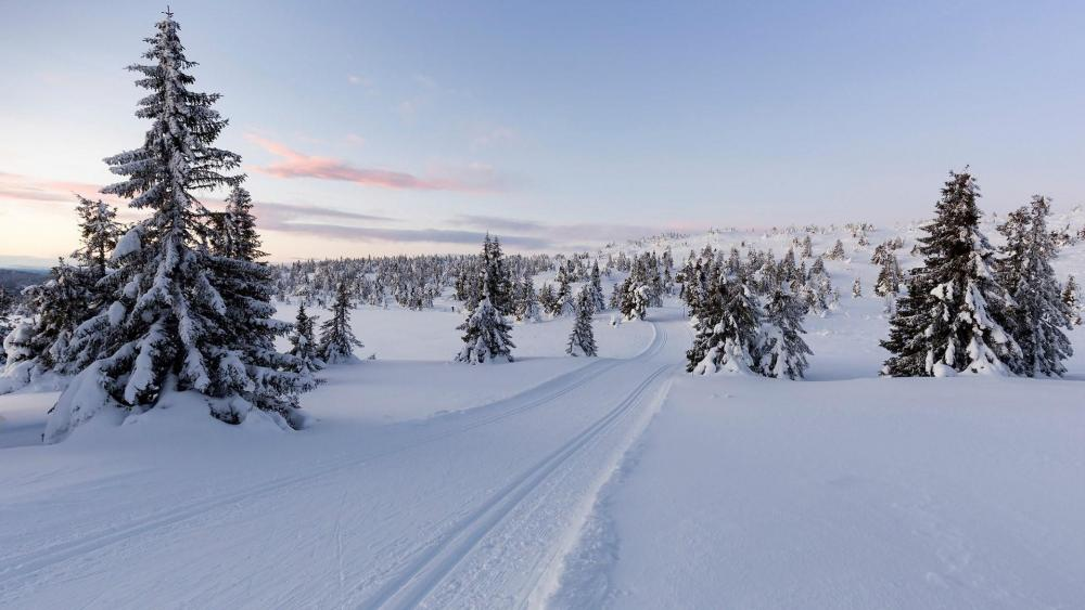 Lillehammer winter landscape wallpaper