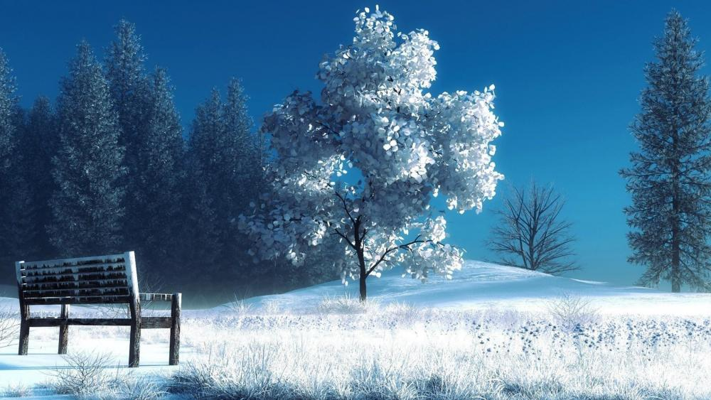White tree with a bench in winter wallpaper