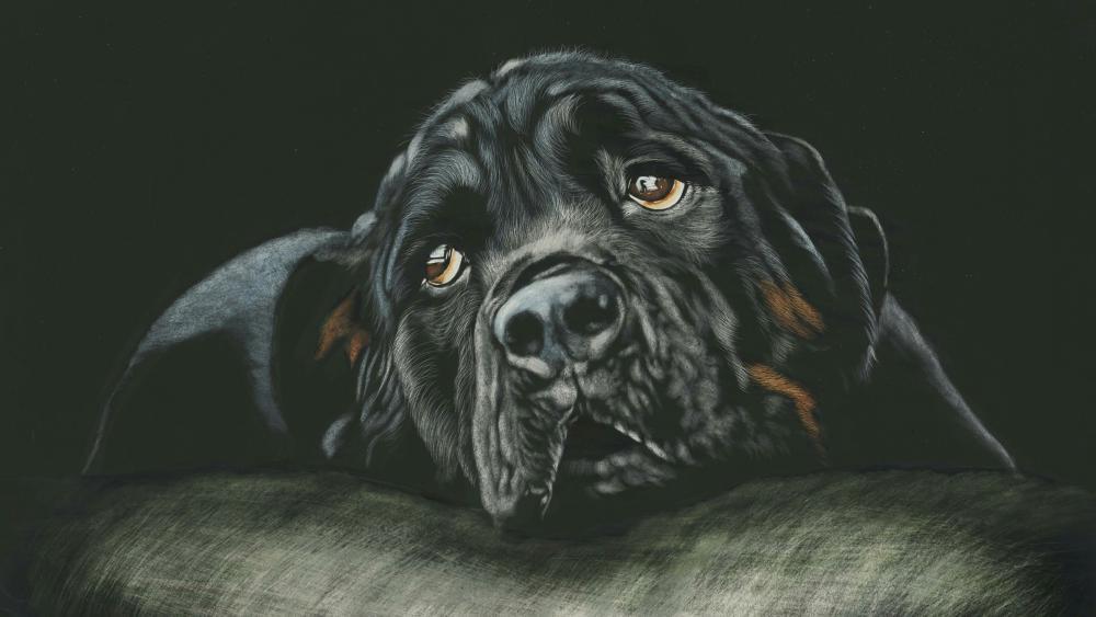 Black Rottweiler - Painting art wallpaper