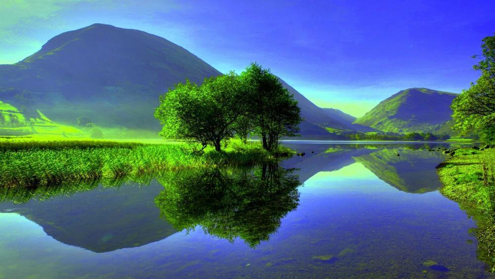Amazing nature reflection wallpaper