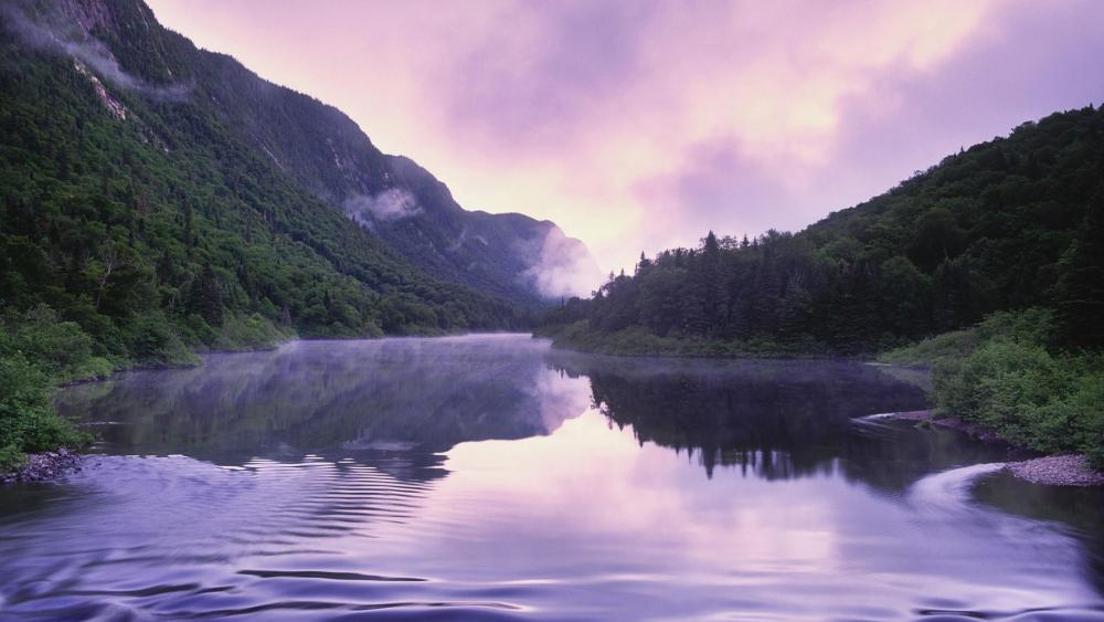 Purple landscape reflection wallpaper