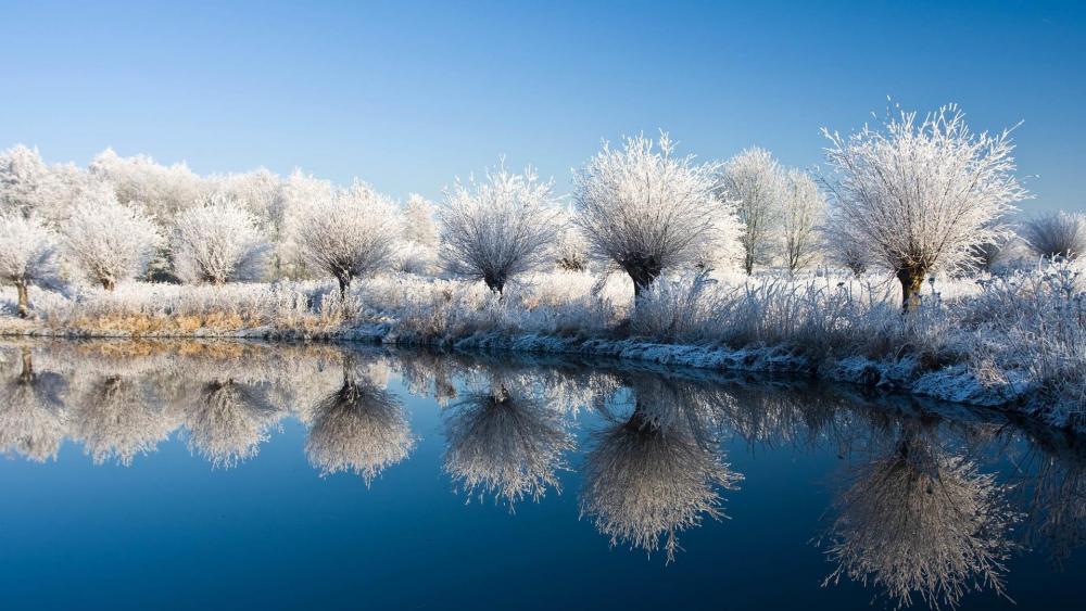 Frozen nature reflection wallpaper
