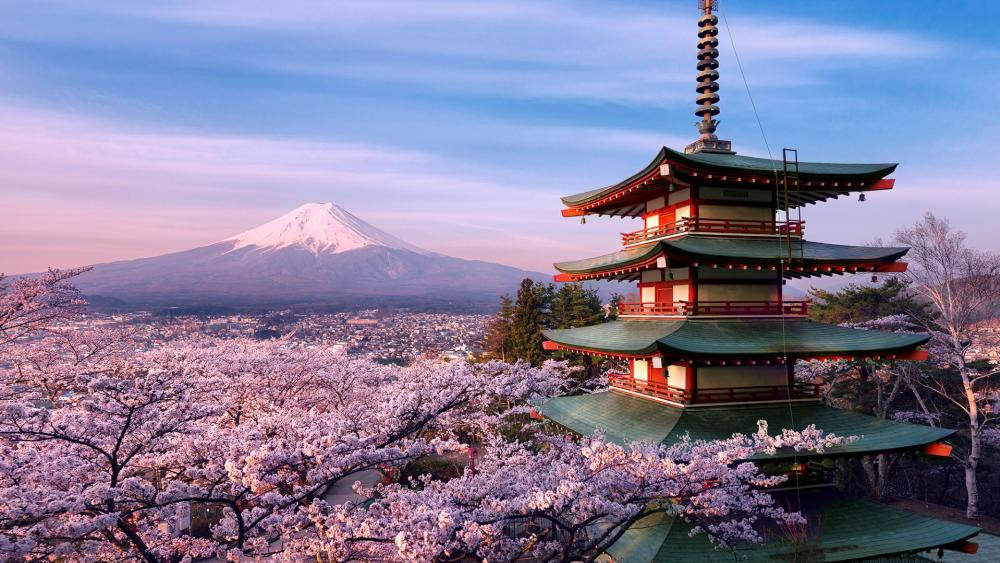 Mount Fuji volcano and Chureito Pagoda wallpaper