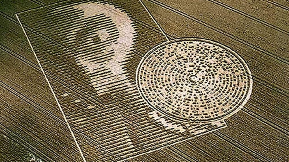 The Alien Face Crop Circle - Sparsholt, Hampshire wallpaper
