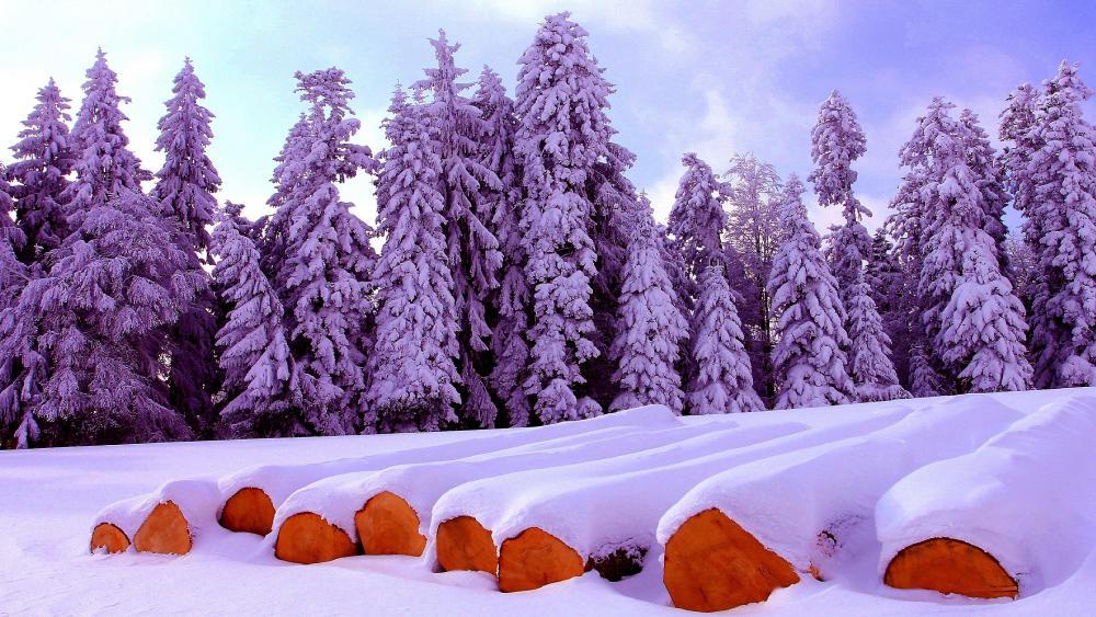 Firewood under snow wallpaper