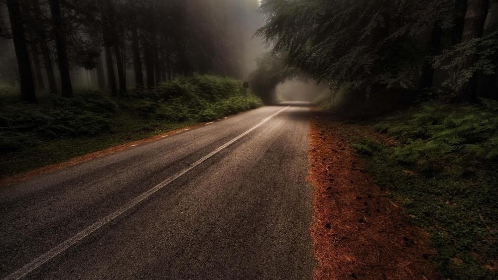 Aspromonte National Park (Italy) wallpaper