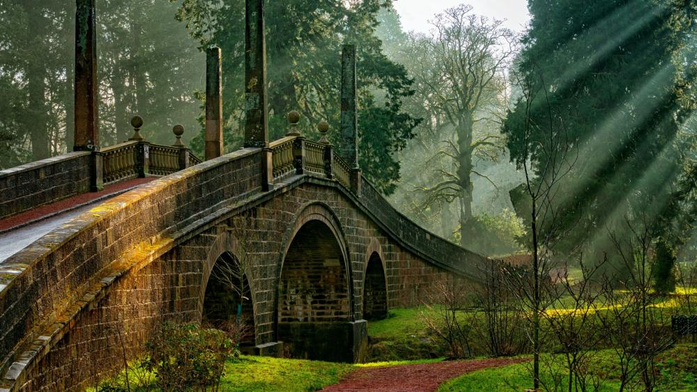 Dumfries House Estate park bridge wallpaper