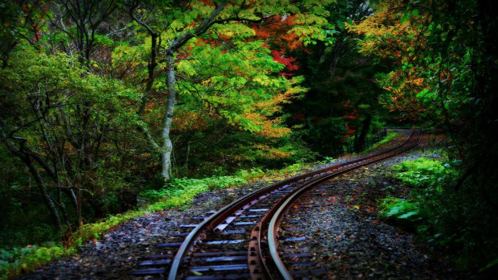 Railroad in the forest wallpaper