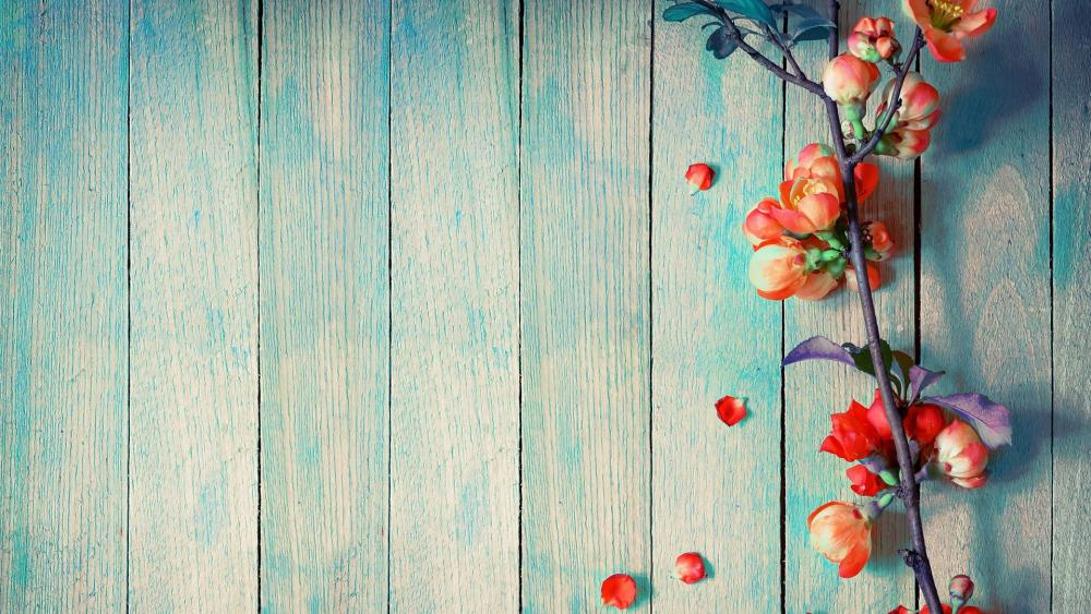 Petals on Wood Planks wallpaper