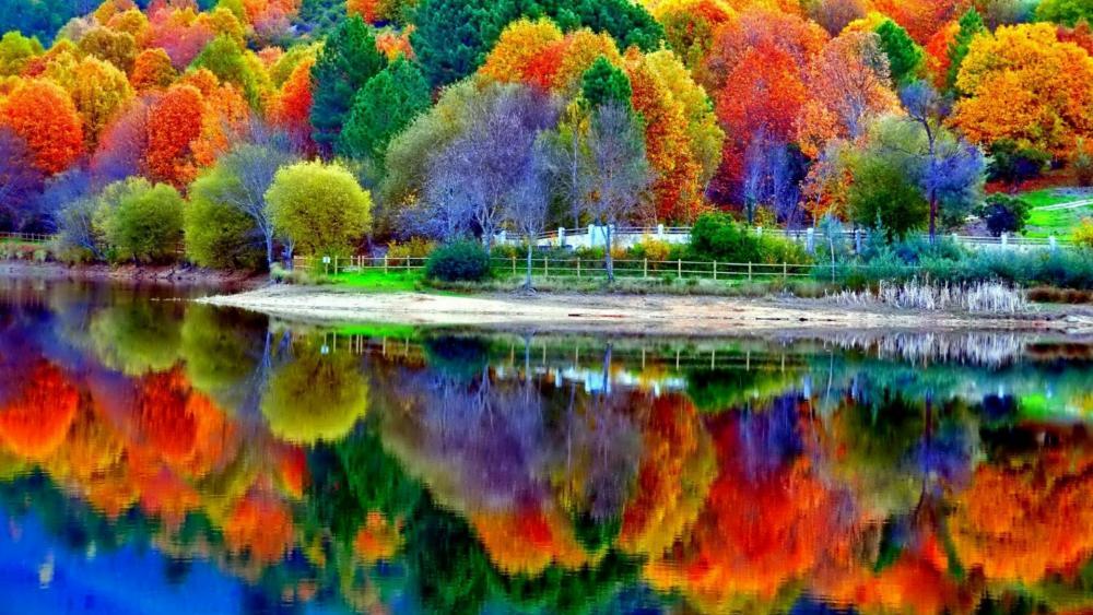 Beautiful autumn lake reflection wallpaper