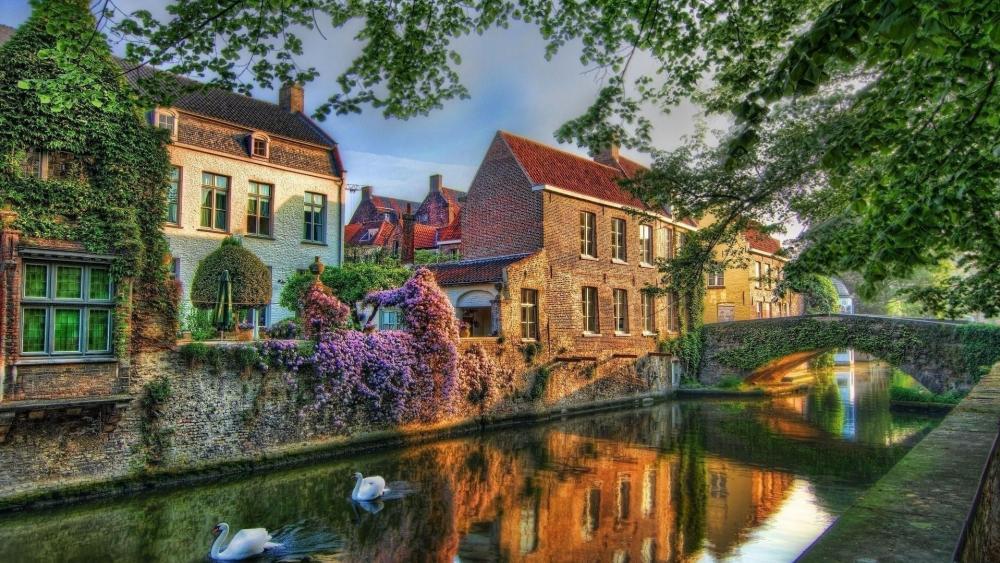 Brugge wallpaper