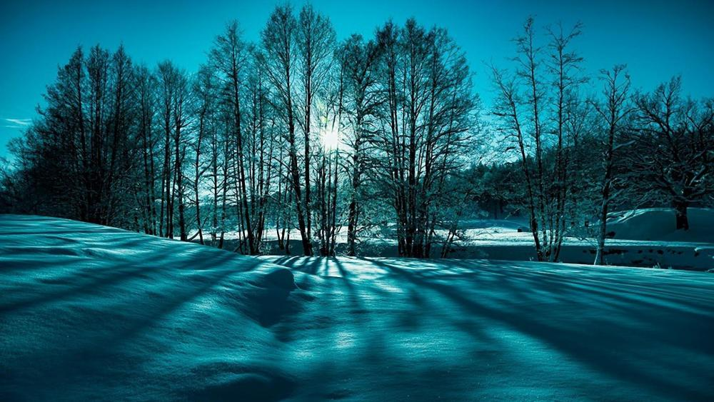 Snowy landscape wallpaper