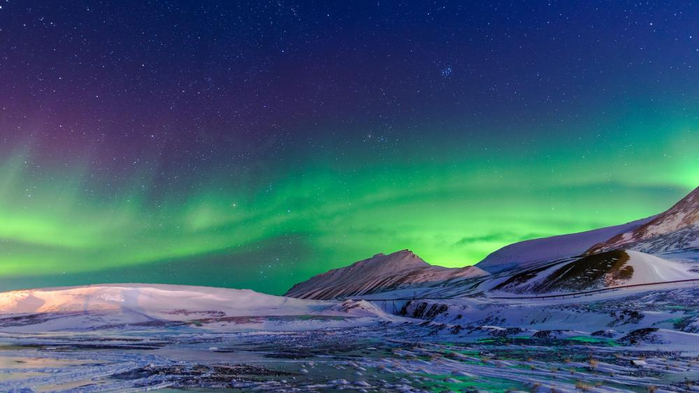 Polar lights in Norway wallpaper