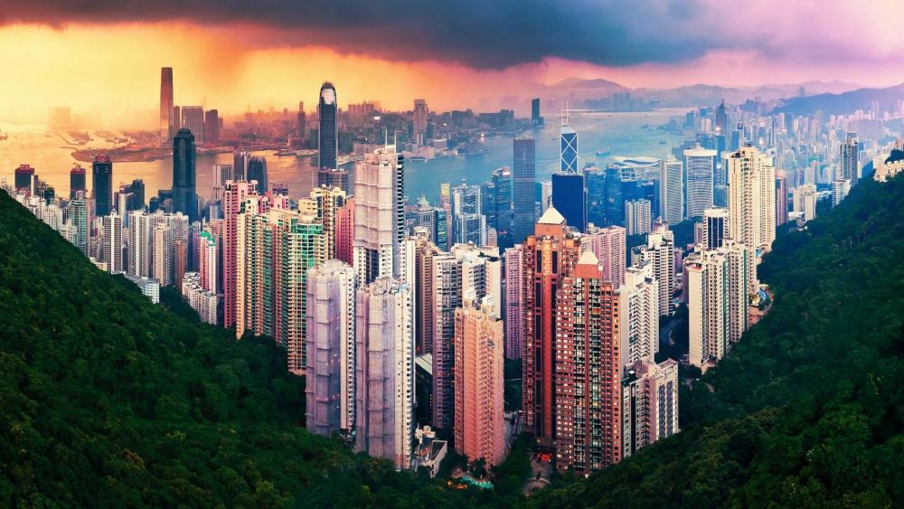 Hong Kong skyscrapers from Victoria Peak wallpaper