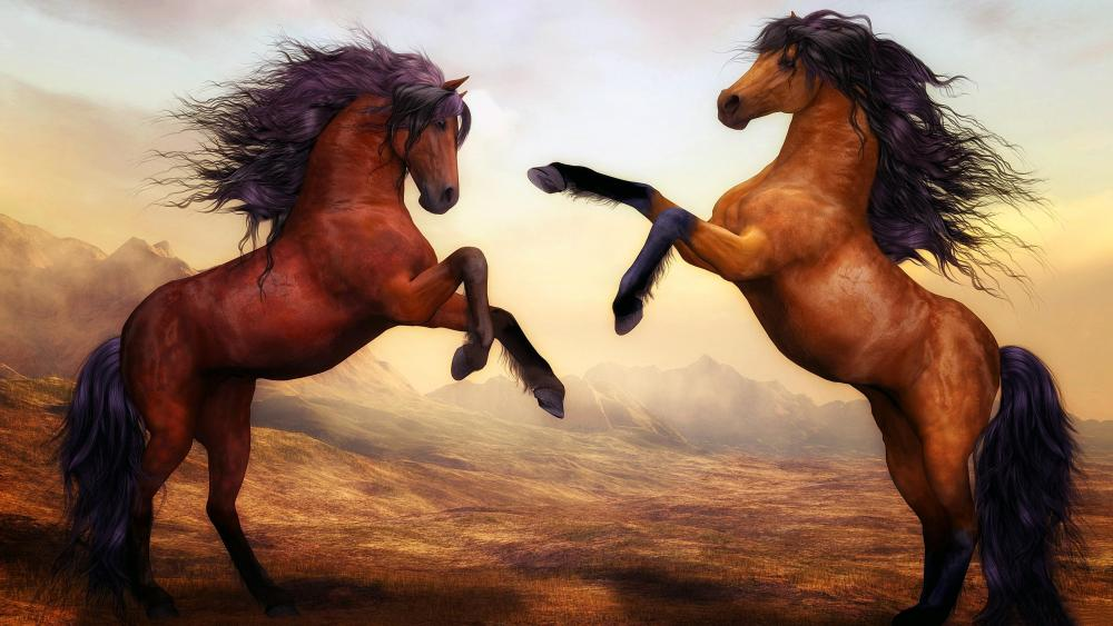 Two beautiful horses fighting wallpaper