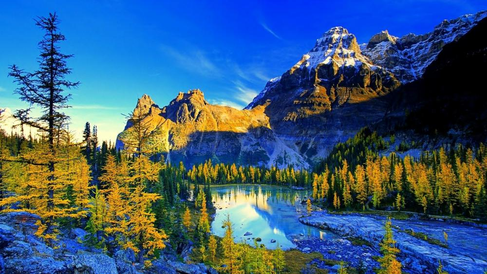 Lake O'Hara (Yoho National Park) wallpaper