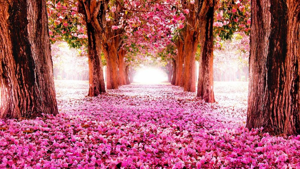 Countryside with trees and flower carpet wallpaper