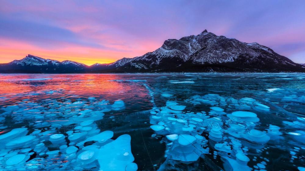 Frozen bubbles in Abraham Lake wallpaper