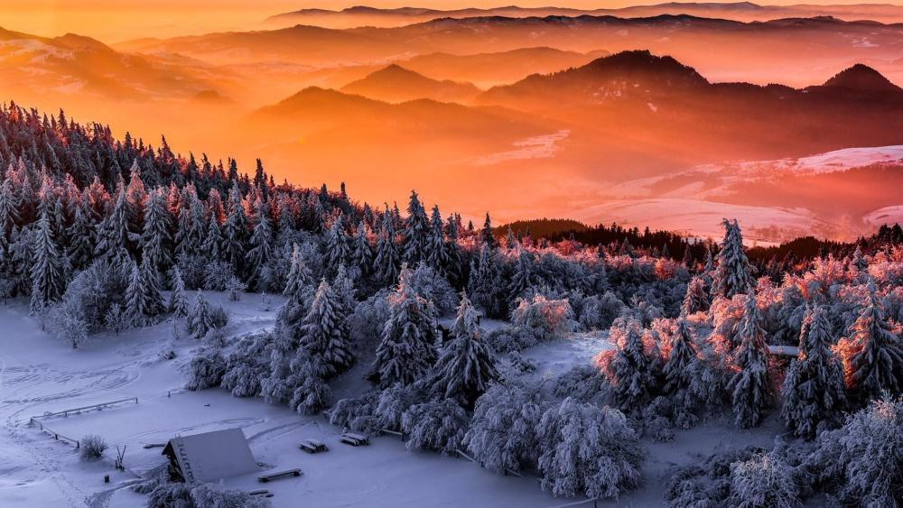 Winter in the Polish mountains wallpaper
