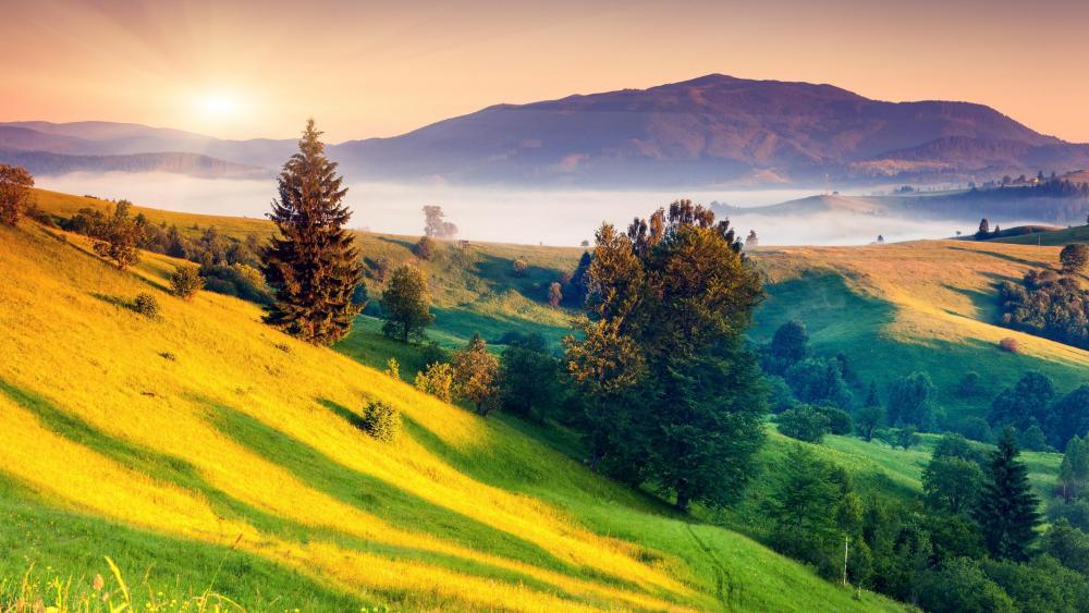 Carpathian Mountains (Ukraine) wallpaper