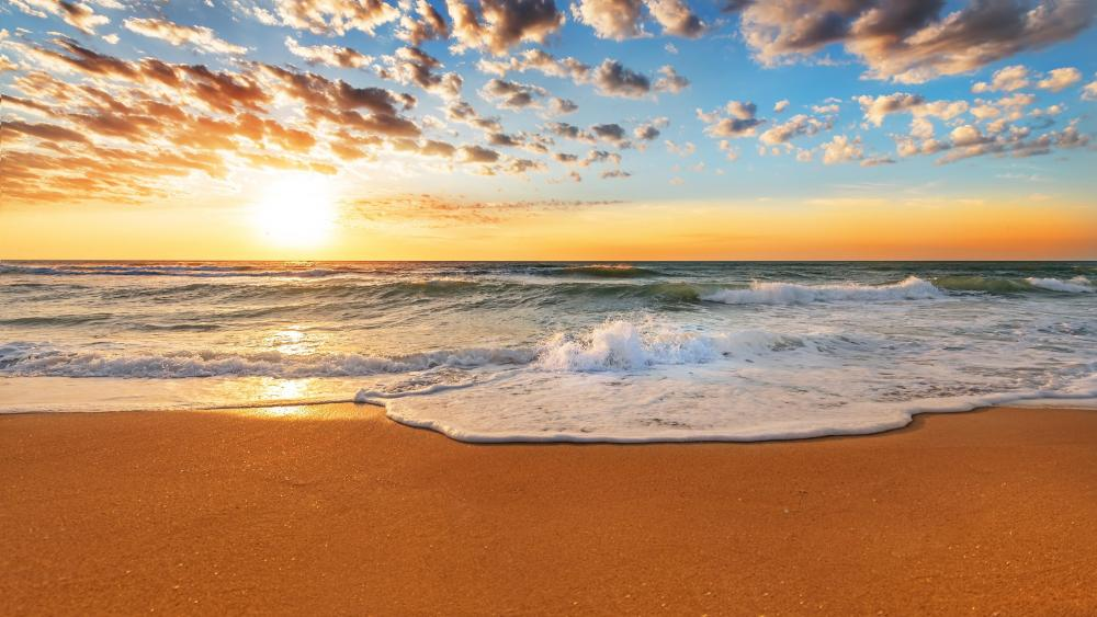 Sandy beach with foamy waves at sunset wallpaper