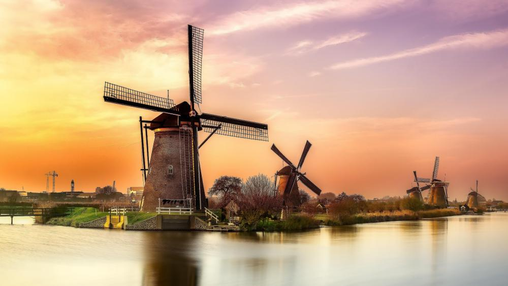 Kinderdijk windmills at sunset wallpaper