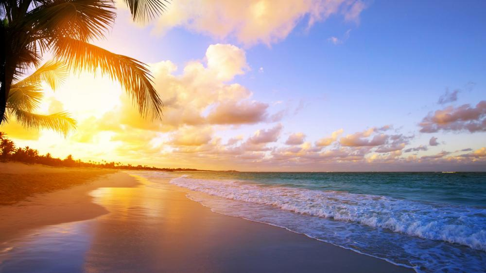 Tropical beach sunrise wallpaper