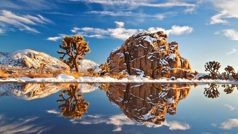 Joshua Tree National Park at winter wallpaper