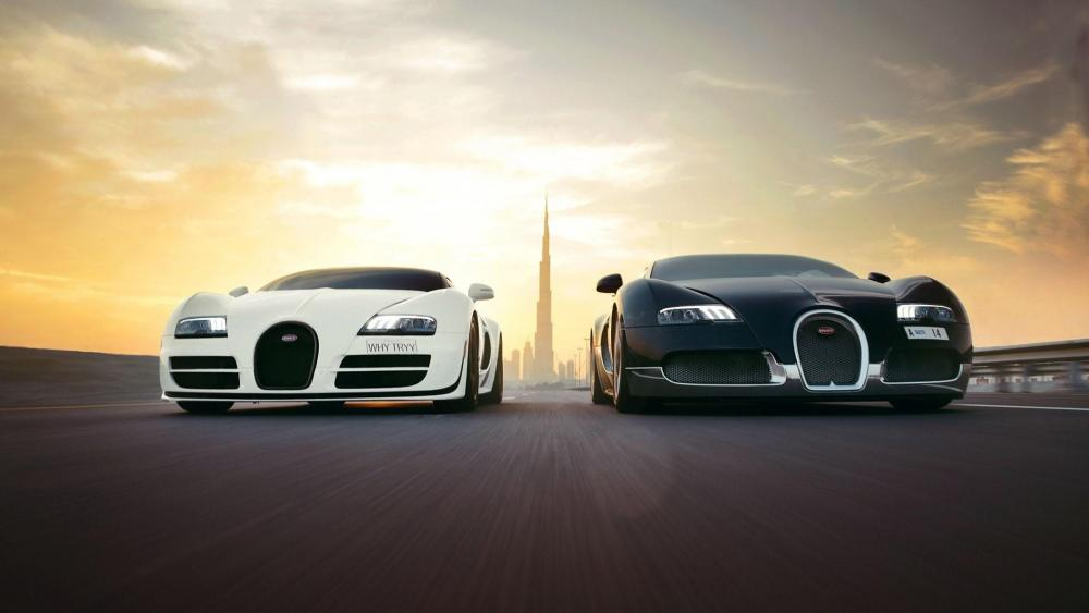 Black and white Bugatti Veyron cars wallpaper