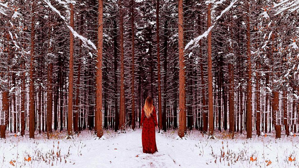 Woman in red dress on white covered snow wallpaper