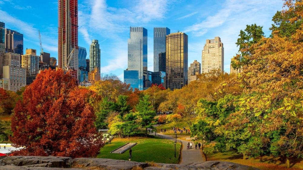 Central Park fall foliage wallpaper