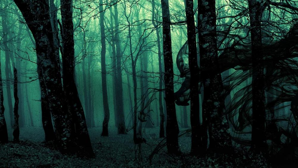 Creepy Dark Forest wallpaper